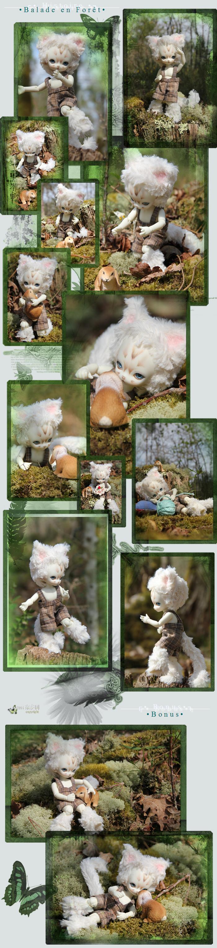 ✰ Ma famille de kitsune (p. 20) Montage-nyani001